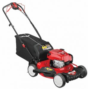 Troy-Bilt TB330 Rear Wheel Drive Self Propelled Lawn mower