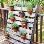 Some Basic about Pallet Garden Ideas